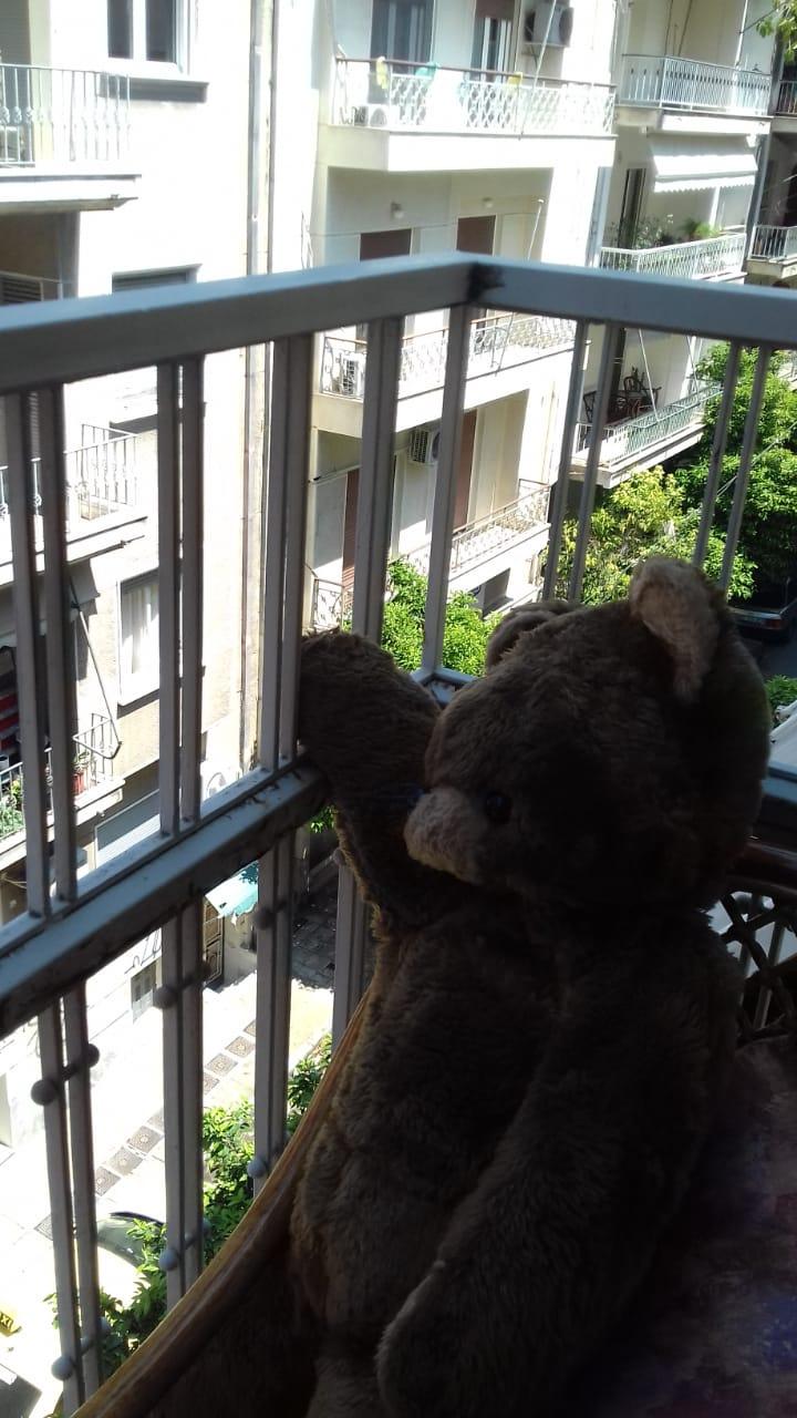 'teddy' foto: sophia vergopoulou